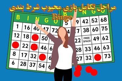 تاریخچه بازی بینگو مراحل تکامل بازی محبوب شرط بندی Bingo